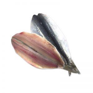 hamsi-fileto